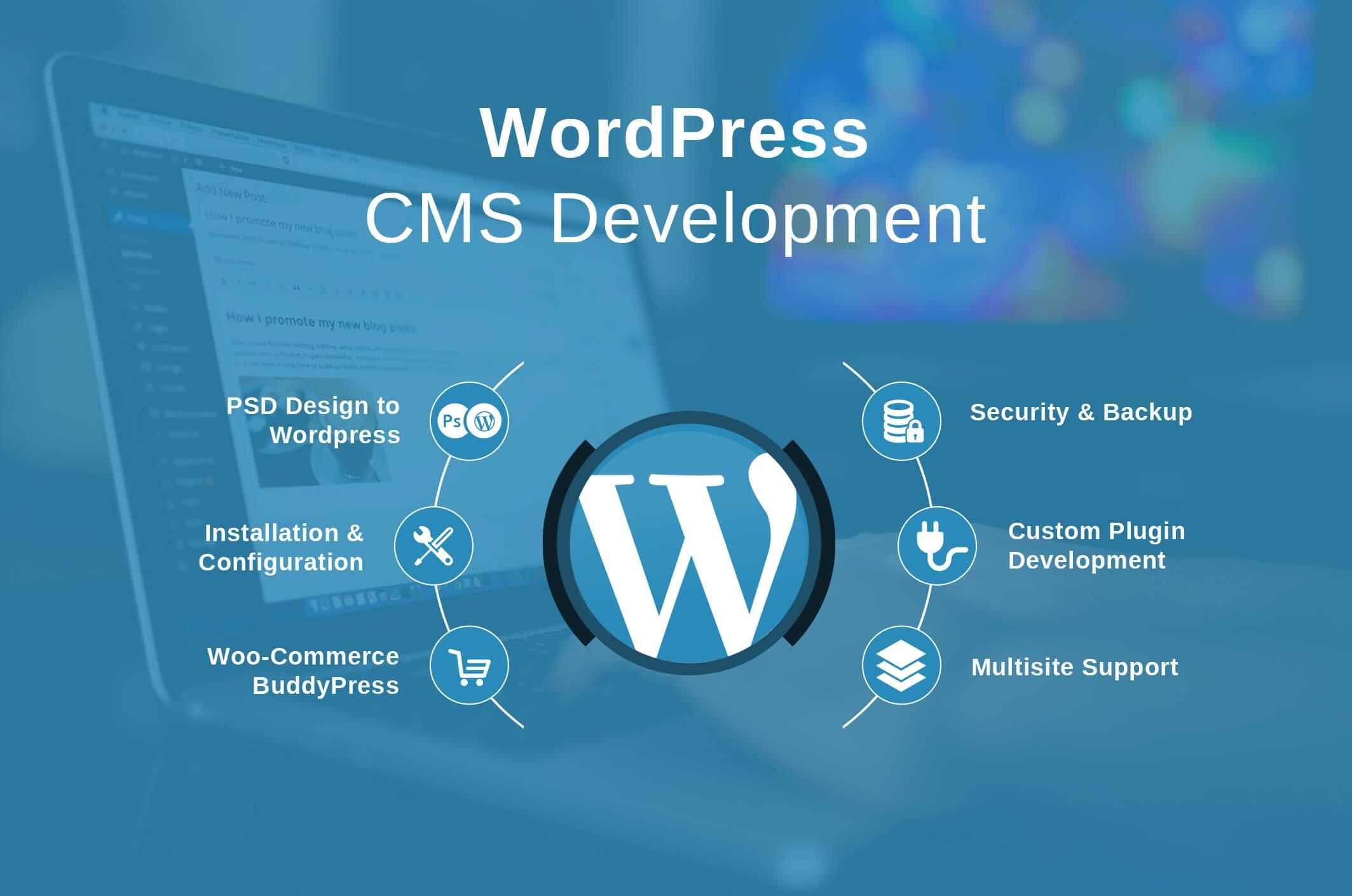 Wordpress Developer Norwich - The Best Developer Images