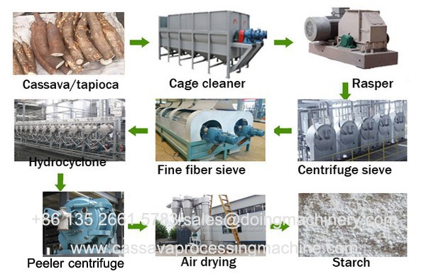 Cassava processing plant for cassava starch extraction