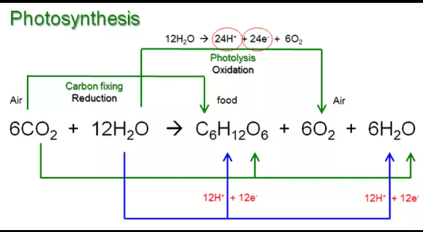 Chemical photosynthesis a is reaction
