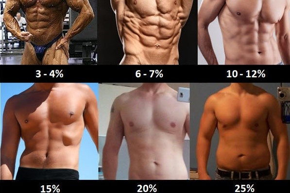 Image result for Nutrition Plan: How To Get 10% Body Fat
