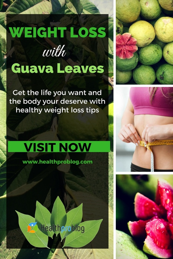 How long do i take guava leaves to lose weight quora ccuart Images