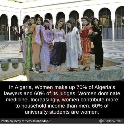 """What are some """"only in Algeria"""" moments?"""