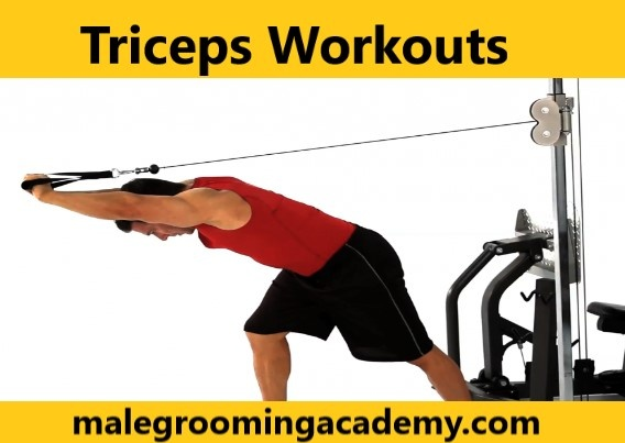 More Developed Triceps Muscles Makes Your Entire Arms Look Like Shotguns Than Pistols Refer To How Get Those Strong Biceps And