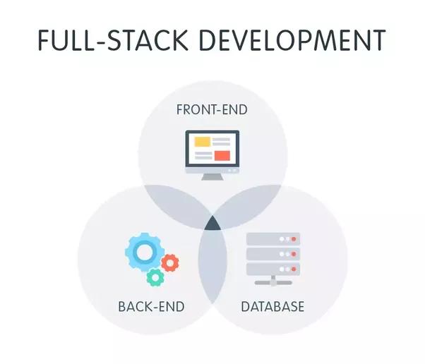 basics of web development pdf