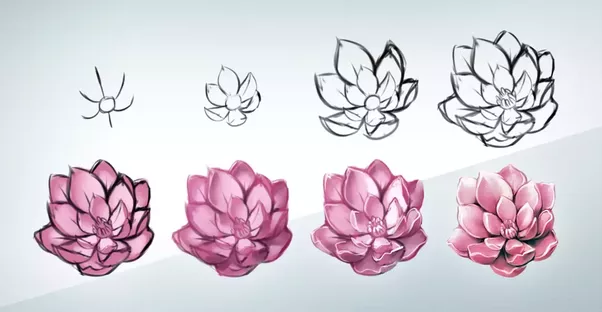 How to draw a realistic flower step by step quora also apps to use online for drawing that are really good and free are acorn mischief free sketch pad lux painting mightylinksfo