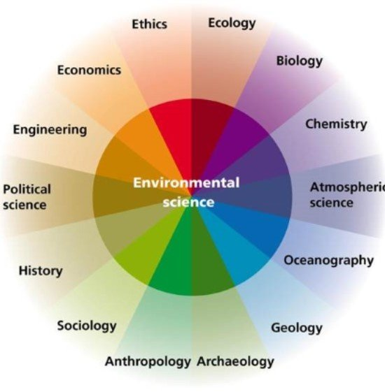 ecology and environmental science relationship