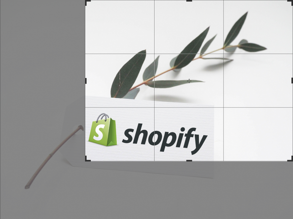 Should I use Shopify or some other shopping software and why