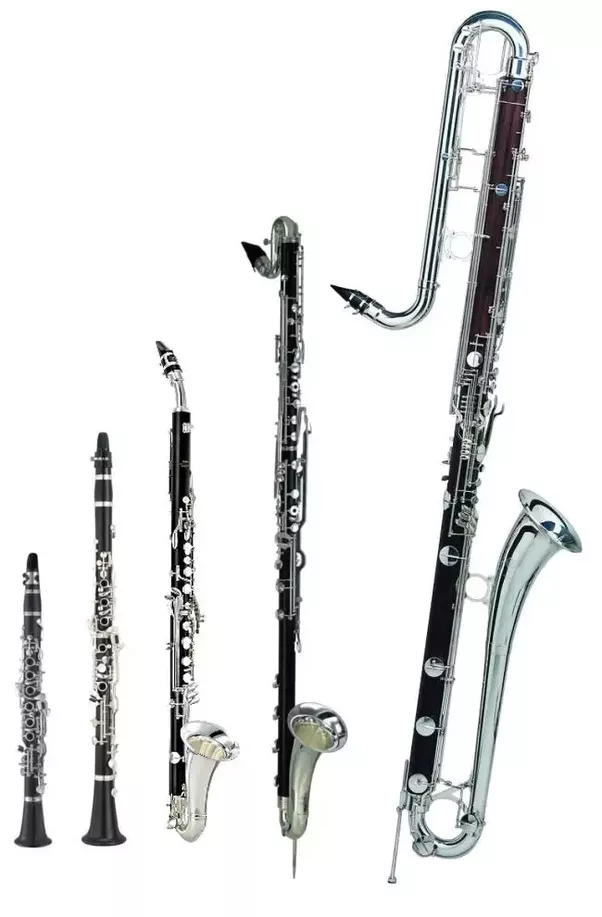 E Flat Clarinet Player Why does anybody choos...