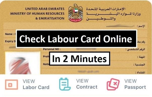 main-qimg-e823527f5b21b2acb05fce612d9ee2b6 Online Application Form For Egypt Visa on italy schengen, b1 b2, ds-260 immigrant, enter japan sample,