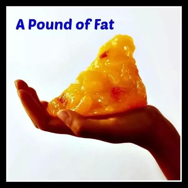Do weight loss dvds work