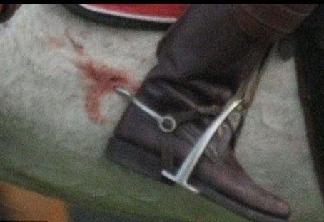 Dont Spurs Hurt The Horse Quora