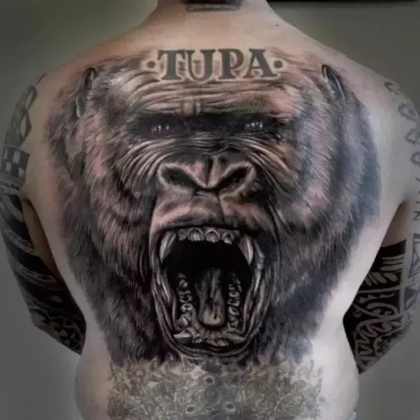 What Are The Best Tattoo Designs Featuring A Silverback