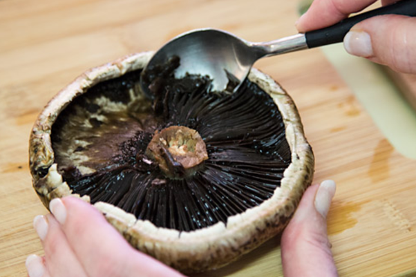How To Identify A Portobello Mushroom Quora