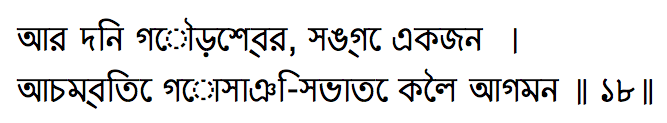 How to view Bengali text (using a Bengali font) in MS Office