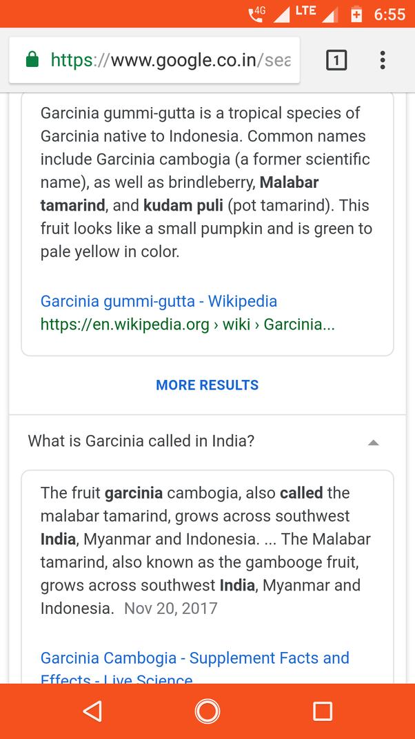 What Is Garcinia Cambogia Fruit Called In Hindi Quora