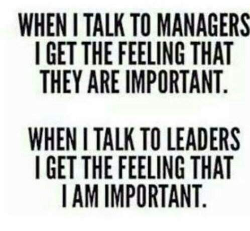 why do i want to be a team leader