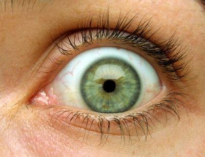 Dark Forest Green Eyes