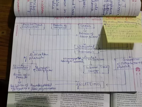 mbbs subjects Mbbs first year complete curriculum and recommended books as well as best books to read the syllabus of three subjects- anatomy, biochemistry and physiology is indeed vast for a new medico.