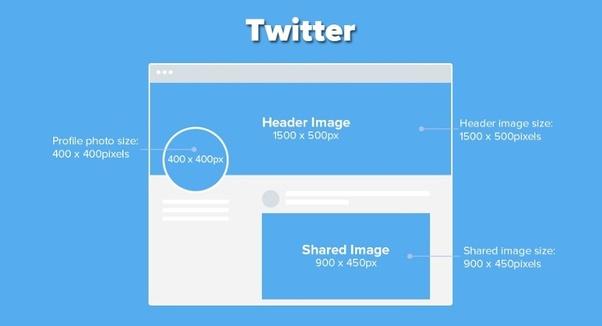 logo twitter size
