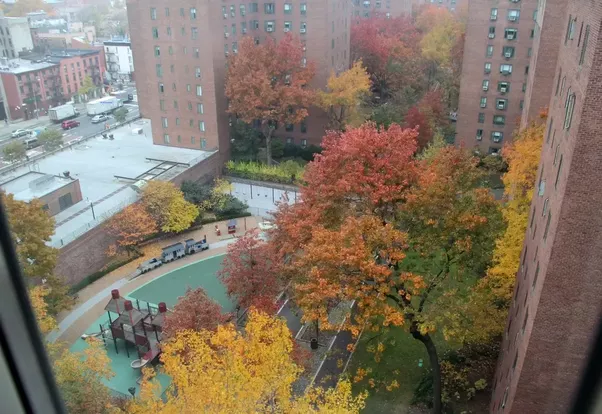 Apartments in new york city what 39 s it like to live in What s it like to live in a small town