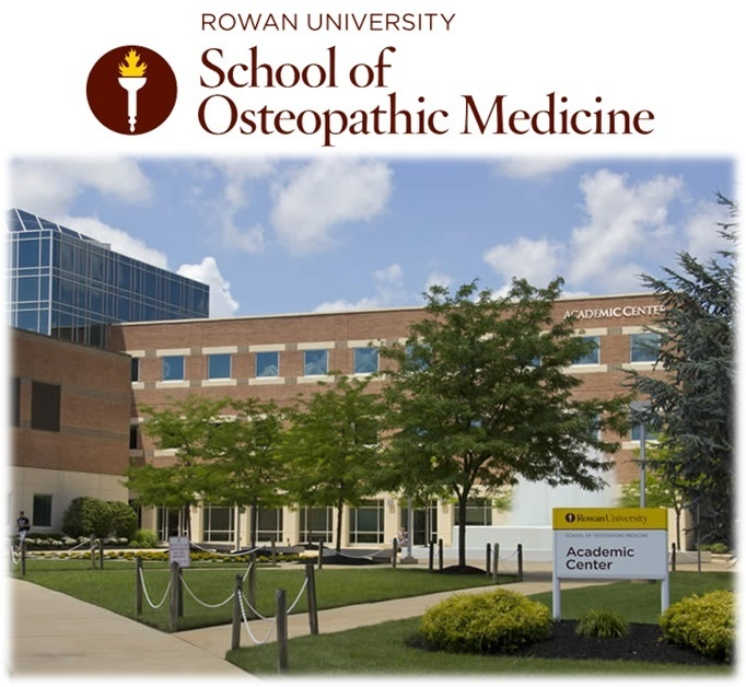 What are the top-ranked Doctor of Osteopathy schools in the