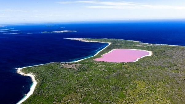 Is There A Pink Lake In Australia Aly So Although Since It S Only 600 Metres Length Might Be More Of Puddle
