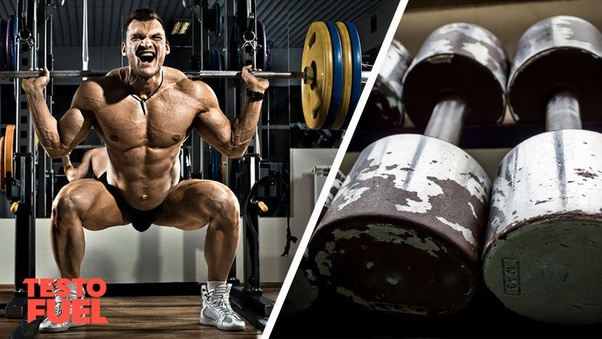 Does lifting weights increase testosterone levels? - Quora