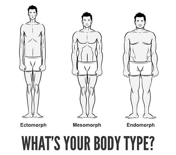 how to determine my body type quora