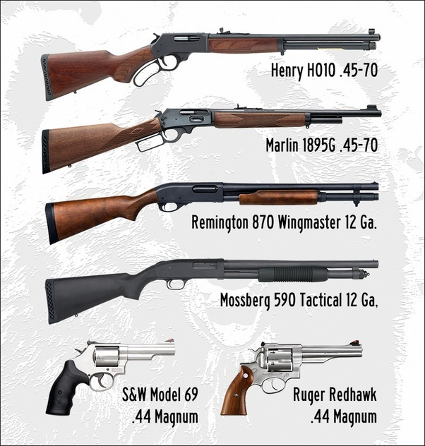 What gun would you recommend for backcountry bear protection