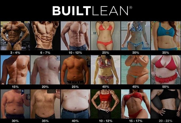 reduce body fat quickly