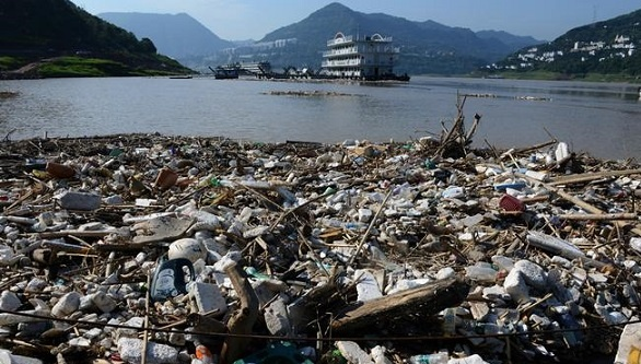 conclusion of environmental pollution wikipedia