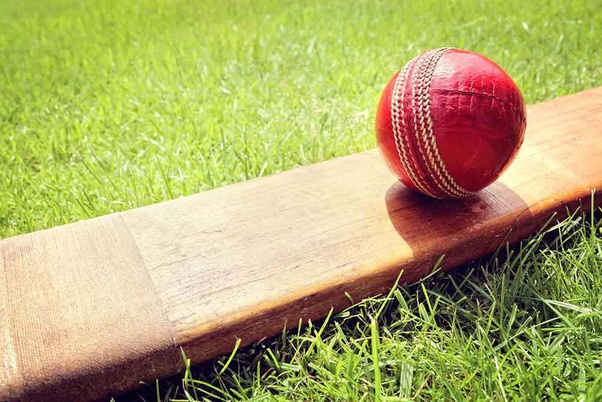 Terms used in cricket betting rate eeriness csgo betting