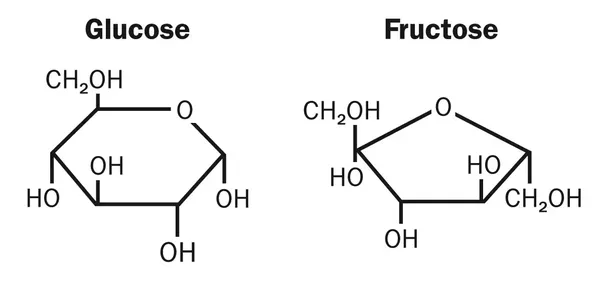What Is The Difference In Structure Between Glucose And Fructose