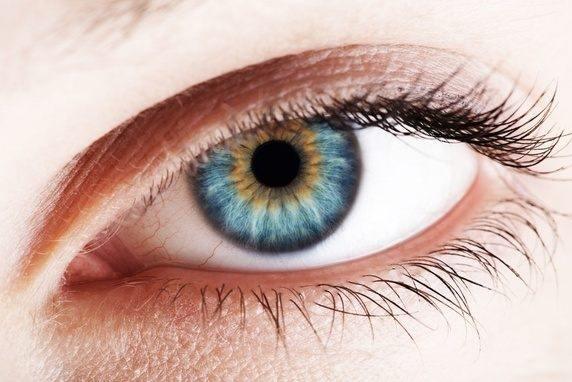 Eye Without Limbal Ring