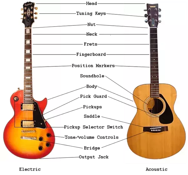Basic Guitar Knowledge | Guitar Lessons @ Ultimate-Guitar.Com
