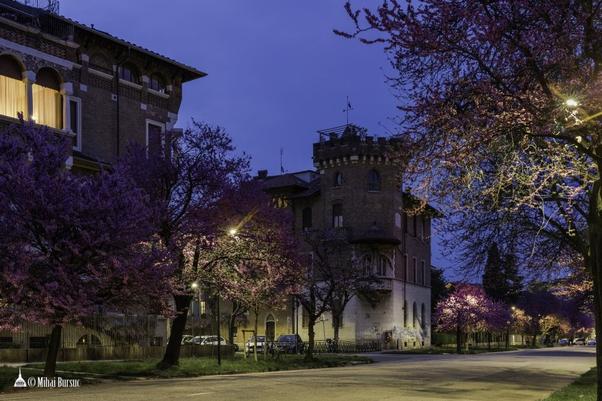 Comunitatea Românească în Italia