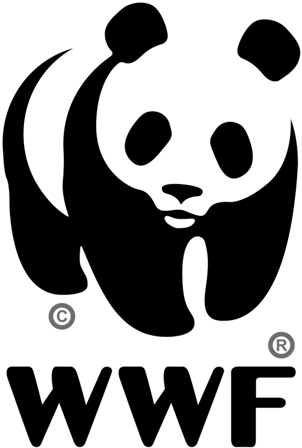 the world wide fund for nature is one of them yes pandas are technically bears