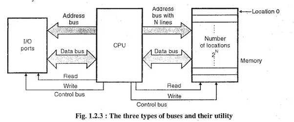 what is the function of an address bus and a data bus in a
