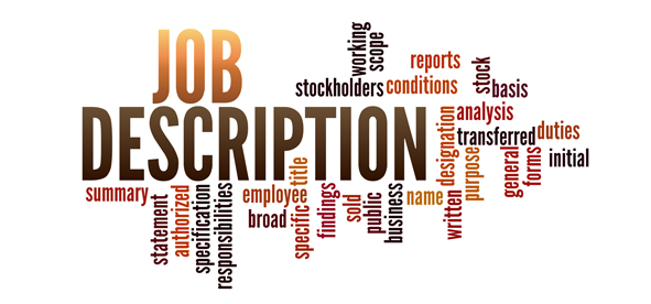 what is the job profile of an ies officer