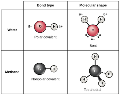 What is a chemical bond? - Quora