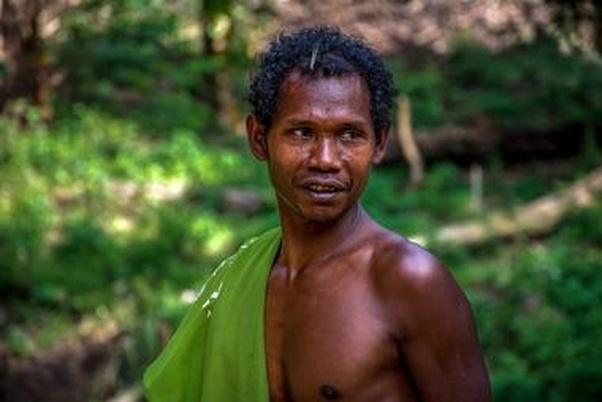 What Is The Difference Between Orang Asli And Malays?