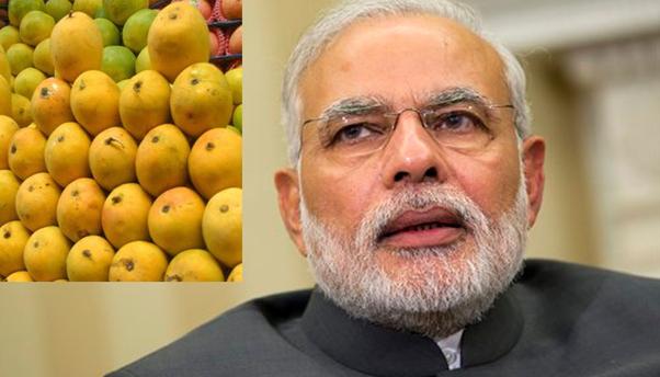 आम (फल) कितने प्रकार का होता है? - Quora