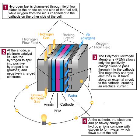 How do hydrogen fuel cells work? - Quora