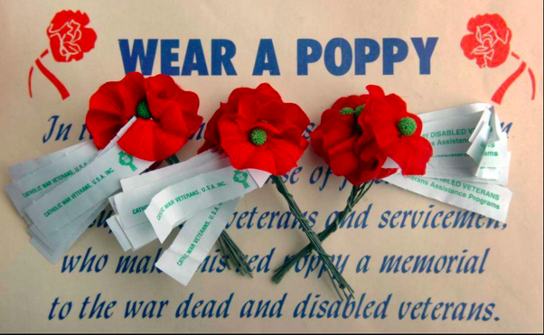 What does to wear my poppy with pride mean quora in the british commonwealth countries poppies are distributed around remembrance day some people wear their poppy much longer or year round mightylinksfo