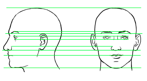 Line Drawing Of Face Profile : How to start sketching a human face quora