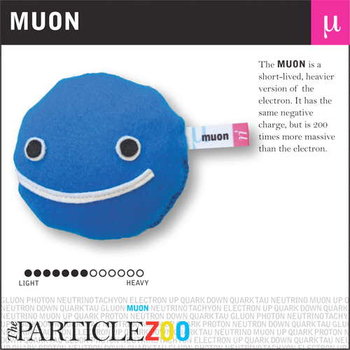 Muons Time Travel