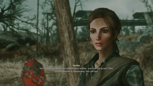 Are there any entertaining, fully-voiced companion mods for