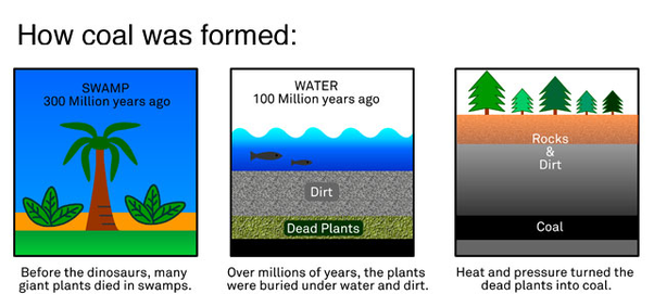 Are Coal Oil And Natural Gas Formed From Decayed Plants