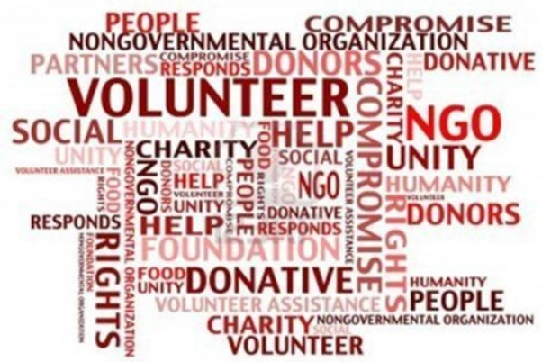 What is a non-profit organisation? - Quora