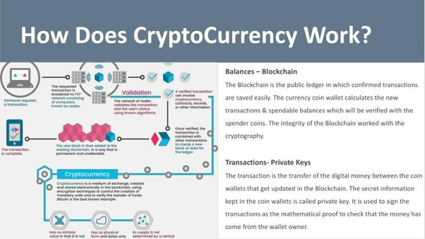 How does a cryptocurrency coin work